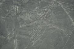 Nazca - Peru (morome7e) Tags: history peru southamerica lines inca plane fly ancient pacific nazca nikon