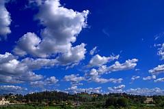 Aria libera (stefano.chiarato) Tags: giardinodiboboli firenze toscana italy nuvole clouds cielo sky paesaggio panorami landscape pentax pentaxk70 pentaxlife pentaxflickraward
