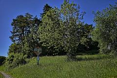 Das Feldkreuz auf der Dorfener Höhe (671m) (Helmut Reichelt) Tags: feldkreuz dorfenerhöhe wolfratshausen meilenberg dorfen juni frühling sommer oberbayern bavaria deutschland germany leica leicam typ240 captureone12 dxophotolab leicasummilux35mmf14asphii