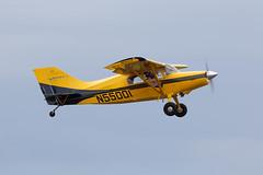 N55001 Maule MX-7-180 (amisbk196) Tags: airfield aircraft dday dday75 flickr amis aviation unitedkingdom daksoverduxford 2019 uk duxford n55001 maule mx7180