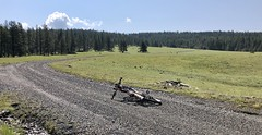 Wallowa Weekend (Doug Goodenough) Tags: bicycle bike cycle pedals spokes ebike bulls evo trek powerfly oregon wallowa forest 2019 19 gravel grinding mountain mountains minam grand ronde camping rpod pto vacation spring june dirt climb drg531 drg53119 drg53119p drg53119pwallowaweekend