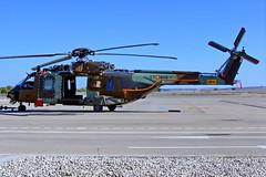 ET-805  HT.29-05  NH90-TTH  Airbus Albacete 10-11-16 (Antonio Doblado) Tags: airplane aircraft aviation airbus helicoptero albacete aviación rotorcraft airbushelicopters nh90tth ht2905 et805