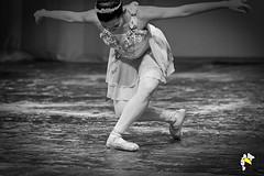 Ela Bailarina (Marcelo Seixas) Tags: ballet dancing gold beautiful lovely cady action dance dança ballerina art bravo best arte passo class performace poise balerina balance artistic mulher linda woman boavista roraima brazil amazonia girl sapatilha star show apresentação boa vista espetáculo performances professional profissional ballo balé bailariana bailarino ballerino palco perfect perfeito perfeição musculos muscles young jovem danze danza tanz tones tons surreal love people photo photography portrait instagram kalizasharlaflores celular sansung marceloseixas angels balet baletka baletki baletky balett ballerinas