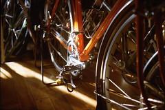 朝日を受けるTA (frenchvalve) Tags: 朝日 ta bicycle film filmphotography analog 35mmfilm rangefinder fixedlens