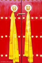 ©Melissa_Donaghue-7504 (daisyvisionxxx) Tags: 2192018 2018 asia china february guangrenlamatemple guangrensi lamatemple pentax pentaxk50 peoplesrepublicofchina shaanxi shaanxiprovince xian xiancity doors gold golden red yellow ©melissadonaghue 中华人民共和国 中国 广仁寺 西安 西安市 陕西 陕西省