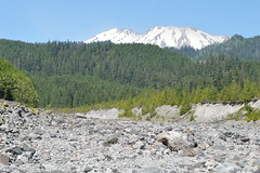 Smith Creek/Muddy River area, Mount St Helens National Volcanic Monument (Geographer Dave) Tags: smithcreek muddyriver mountsthelensnationalvolcanicmonument skamaniacounty washington june2019