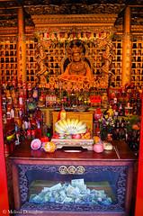 ©Melissa_Donaghue-7478 (daisyvisionxxx) Tags: 2192018 2018 asia buddhism buddhist china february guangrenlamatemple guangrensi lamatemple pentax pentaxk50 peoplesrepublicofchina rightturningconchshell shaanxi shaanxiprovince shankha xian xiancity alcohol cash charitybox food fruit money offerings ©melissadonaghue 中华人民共和国 中国 广仁寺 西安 西安市 陕西 陕西省