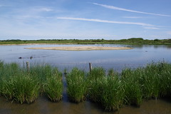 Fishtail Lagoon (Derek Morgan Photos) Tags: hampshire solentway fishtaillagoon keyhaven