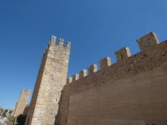 Portal de Sant Jordi in Montblanc (ell brown) Tags: portaldesantjordi montblanc tarragona catalonia catalunya spain españa tree trees concadebarberà pradesmountains muralladesantjordi stgeorgeandthedragon santjordiieldrac sanjorgeyeldragón tower