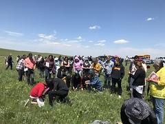 KEPA (Oldman Watershed) Tags: kepa wildflowers elders grass youth blackfoot