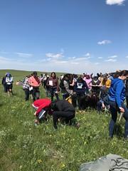 KEPA (Oldman Watershed) Tags: kepa wildflowers range grass blackfoot william singer plant walk sydney rebekkah