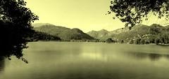 Le lac du Broc (bernard.bonifassi) Tags: bb088 06 alpesmaritimes juin 2019 printemps counteadenissa canonpowershotsx60 lacdubroc