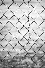 No Shortcuts (Jeremy Beckman) Tags: blackandwhite hemet chainlink fence metal patched repair damage rust scar mesh obsession walkingthedog abstract texture