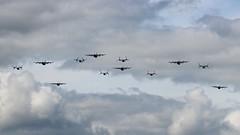 USAF Flypast (R.K.C. Photography) Tags: usaf flypast lockheed mc130j commando hercules boeing cv22b osprey 352ndsow daksoverduxford daksovernormandy duxford dday75 aviation military aircraft england unitedkingdom cambridgeshire uk canoneos100d