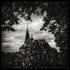 silhouette (*altglas*) Tags: mediumformat mittelformat 6x6 120 film analog expired expiredfilm svema250 svema bw monochrome zeiss superikonta 53316 erfurt dom church silhouette square