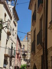 Carrer Vilanova del Mercadal, Montblanc (ell brown) Tags: montblanc tarragona catalonia catalunya spain españa tree trees concadebarberà pradesmountains carrervilanovadelmercadal balcony balconies