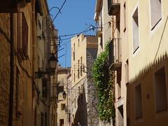 Carrer Fra Magí Català, Montblanc (ell brown) Tags: montblanc tarragona catalonia catalunya spain españa tree trees concadebarberà pradesmountains carrerframagícatalà balcony balconies