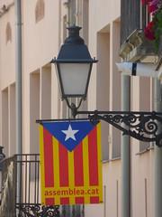 Carrer Poblet i Teixidó, Montblanc - Catalan flag - assemblea.cat (ell brown) Tags: montblanc tarragona catalonia catalunya spain españa tree trees concadebarberà pradesmountains flag catalanflag assembleacat carrerpobletiteixidó