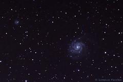 M101 - closeup (Puma 68) Tags: astrofotografia pinwheel stelle m101 galassia sigma120400 stella sky night photoshop stars star galaxy astrophotography cielo messier notturna notte lightroom astrofoto ngc5474 pinwheelgalaxy nightfoto deepskystacker sigmaapo120400mmf4556dgoshsm galassiagirandola staradventurer