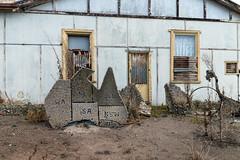 Wolseley (Westographer) Tags: wolseley southaustralia australia countrytown rural folkart gardendecorations concretegardendecorations derelict abandoned weathered patina corrugatediron shellart ruin