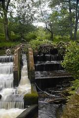 Dane Weir, adjacent overflow (philept1) Tags: weir river dane peakdistrict staffordshire cheshire water countryside