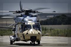 🚁 NH 90 Eurocopter, Albacete (ES) (EFRAIN A. JACOME Q.) Tags: