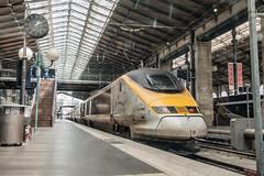 Eurostar TMST 3223 (ice91prinzeugen) Tags: tgv tmst eurostar hgv