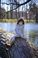 Rachel (fluffy_347) Tags: minifee mirwen minifeemirwen doll dolls dollphotogallery dollphotography bjd bjdgirl bjdphoto bjdmsd msd fairyland
