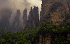 Avatar (Fil.ippo) Tags: filippobianchi avatar zhangjiajie national forest park hunan china cina panorama landscape cameron mist fog nebbia mood mountain montagne greenery verde fuji xt2 filippo