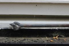 Window Crud (Epochend) Tags: sweden window sill windowsill web dirt rust latch