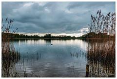 Reflections & Dreams, Het Hilgelo-Netherlands (Stathis Iordanidis) Tags: lake lakeside lakeshore park traveling reflections stillwater clouds netherlands het hilgelo