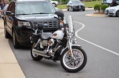 "2019-05-31 (62) a Harley (JLeeFleenor) Tags: photos photography va virginia leesburg loudouncounty loudoun motorcycle bike ""αυτοκίνητο ποδήλατο"" μοτοσυκλέτα 摩托车 机车 摩托車 機車 ""دراجة نارية"" نارية صغيرة"" بموتور"" motocicleta мотоцикл motosiklet motocicletta motocyclette moto motorrad ""オートバイ"" אופנוע harleydavidson harley outside outdoors"