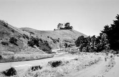 Bernal Hill (pinhole) (aweiss.sf) Tags: 6x9 acros100 agfa analog analogphotography analogue bernal bernalheights blackwhite california clack film filmisnotdead fujifilm ishootfilm pinhole sanfrancisco landscape