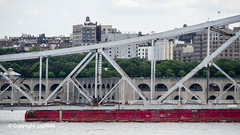 Old Tappan Zee Bridge Superstructure Remains floating down the Hudson River, New York City (jag9889) Tags: 1955 2019 20190606 barge boat bridge bridges bruecke brücke crossing detail dismantling governormalcolmwilsontappanzeebridge hamiltonheights harlem hudsonriver infrastructure k004 manhattan metal ny nyc newyork newyorkcity newyorkthruway northriverwastewatertreatmentplant outdoor pont ponte puente punt river scrap span structure tappanzee tappanzeebridge transportation tug tugboat usa unitedstates unitedstatesofamerica water waterway workboat jag9889