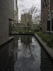 2019_03_26 UK Trip Amsterdam-3260234 (chrisveale) Tags: amsterdam rijkmuseum uktrip