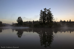 Mud Bay Mornings 3658 (All h2o) Tags: morning clouds sunrise water trees sky pacific northwest olympia washington state nature landscape fog