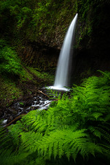 """Busy Trail, Peaceful Scene (Catherine """"Cat"""" Rose) Tags: june oregon waterfall columbiarivergorge 2019"""