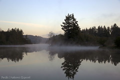 Mud Bay Mornings Two 3660 (All h2o) Tags: fog clouds morning sunrise nature landscape water trees pacific northwest olympia washington state
