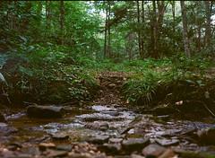 Trail (luciferslunarresort) Tags: ektar medium format mf zenza bronica