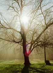 Good morning (luciferslunarresort) Tags: ektar medium format mf zenza bronica
