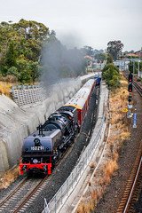 Gloomy Transfer (southernspiritnr84) Tags: 32class 60class 44class carriage glclass diesel 40class locomotive alco ssfl ge passenger ad60 pclass heritage garratt steam transfer birrong nsw australia