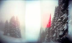 (castles of forrestry) Tags: holga120n mediumformat portra expired snow colorado america unitedstates fog forest nostalgia