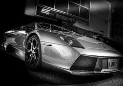 LAMBO (Dave GRR) Tags: lambo lamborghini murcielago sportscar exotic supercar hypercar monochrome mono black white racing toronto auto show carsncoffee