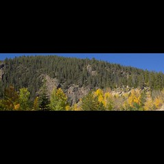 Trees turning to fall colors. Taken on 9-25-18, in Guanella Pass, Colorado.  ~ ~ ~ ~ ~  #CanonRebelT5 #Canon #Rebel #T5 F/25 28mm 1/50s ISO-200 #trees #fallcolors #GuanellaPass #Colorado #oooShiny #oooShinyPhotography #tree #treephotography #tree_captures (oooshinyphotography) Tags: hashtagcolorado canonrebelt5 autumntrees naturephotography autumnleaves trees guanellapass fallleaves coloradoshared canon oooshiny fall landscapephotography colorado coloraodolove t5 rebel fallcolors treephotography nature tree coloradocreative coloradophotography oooshinyphotography treecaptures viewcolorado coloradophotographer autumn coloradocollective landscape