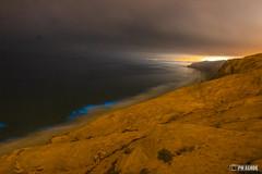 Bioluminescence at Torrey Pines Glider Port, San Diego (write2ashok.now) Tags: bioluminescent bioluminescence water glow bluewaves torreypines gliderport beach night