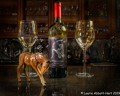 20190606Vino Equus 28091-Edit (Laurie2123) Tags: ad200 laurieabbotthartphotography laurieturnerphotography laurietakespics odc odc2019 ourdailychallenge offcameraflash reflecion wine horse nikond800 nikkor35mm