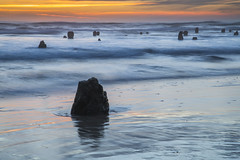 Ghostly Waters (Tom Fenske Photography) Tags: neskowin oregon coast sunset lowtide ocean motion waves trees stumps water
