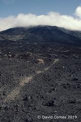 Tenerife - Parque nacional del Teide (CATDvd) Tags: nikond7500 canaryislands illescanàries islascanarias tenerife espanya españa spain february2019 catdvd davidcomas httpwwwdavidcomasnet httpwwwflickrcomphotoscatdvd landscape paisaje paisatge montaña mountain muntanya parc park parque volcà volcán volcano teide parquenacionaldelteide parcnacionaldelteide teidenationalpark flickrtravelaward