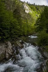 Zuriza, río Veral. (fcuencadiaz) Tags: ansó pueblosespaña aragón huesca leica leicadigital leicaq paisajes polarizador zurizaliza pirineoaragones fullframe formatocompleto