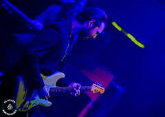 Flirting with the Blues 2018 www.denozem.com (62 van 597)